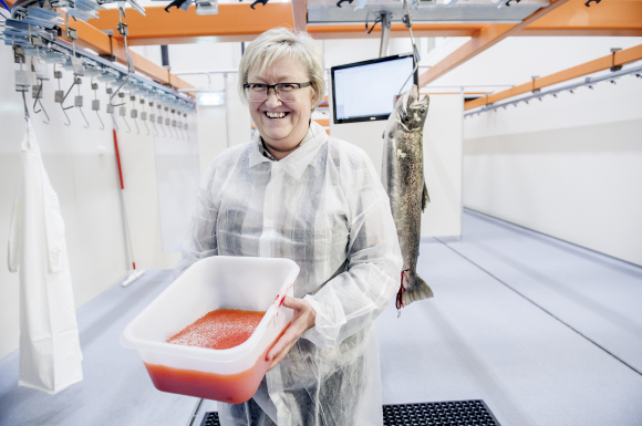 The new broodstock facility in Steigen contributes to the sustainable development of aquaculture, says Norwegian fisheries minister Elisabeth Aspaker. The facility produce 100 million salmon eggs. Picture:Gorm K. Gaare.