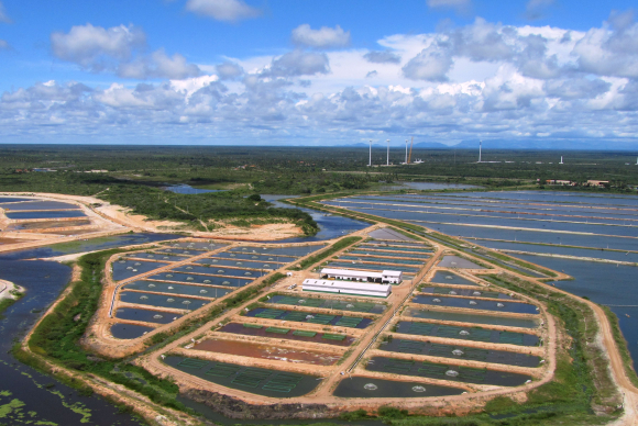One of Aquabel's production sites in the state of Ceara, north east Brazil.